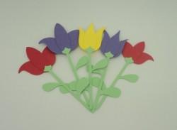 Tulipa com caule